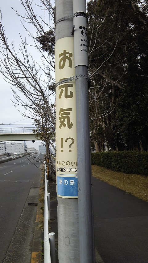 新木場の電信柱