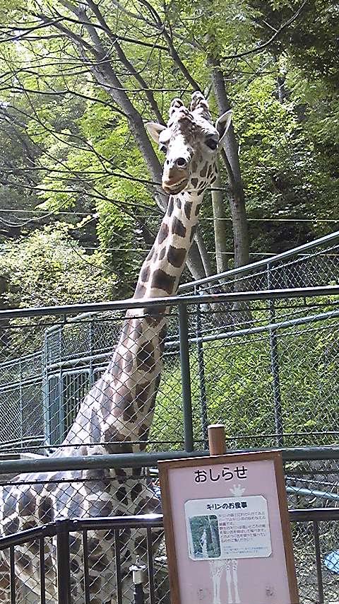 福岡市動物園にて